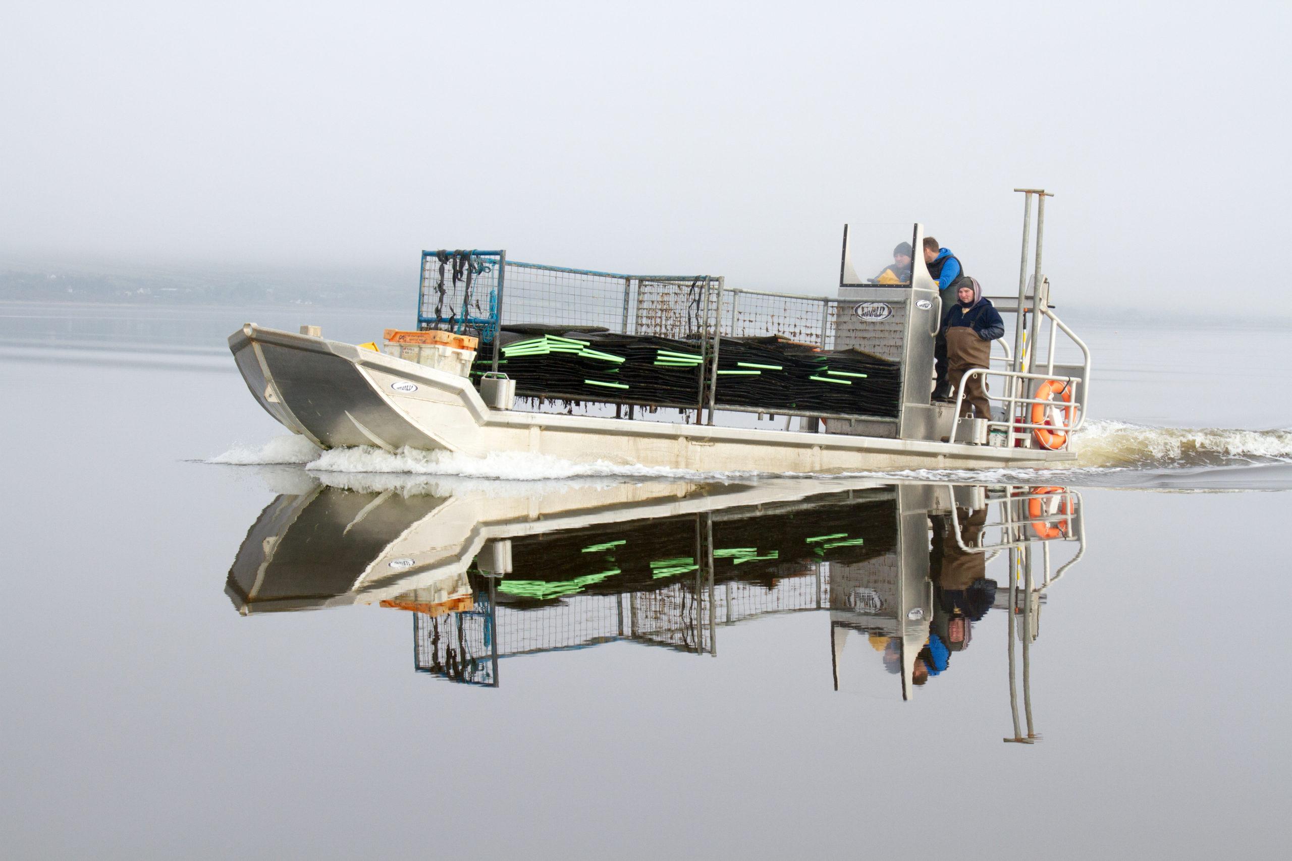 Cromane Bay Shellfish Oyster Boat